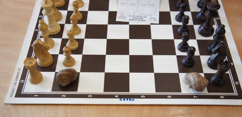 TOURNOIS FIDE A MERU